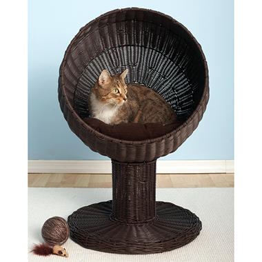 Kitty Ball Bed