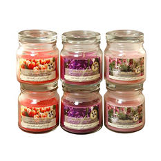 Floral Collection Scented Candles - 2.5oz Apothecary Jar - Set of 6