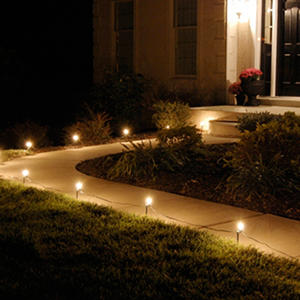 Electric Pathway Clear Lights - 10 ct.
