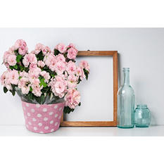 "8"" Planter with Pink Azalea"
