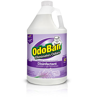 OdoBan Odor Eliminator and Disinfectant Concentrate - Lavender