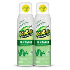 OdoBan Disinfectant Fabric & Air Freshener Spray, Eucalyptus Scent (14 oz., 2 pk.)