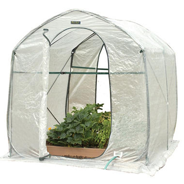 Greenland Gardener Backyard Pop Up Greenhouse