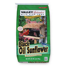 Valley Splendor Black Oil Sunflower Wild Bird Food (50 lbs.)