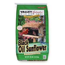 Black Oil Sunflower Seed (40 lbs.)