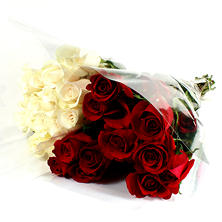 Wedding Pack - Red & White Roses (100 stems)