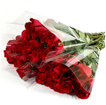 Roses - Red - 100 Stems