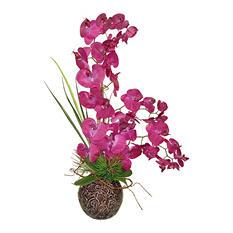 """32"""" Orchid Succulent Arrangement"""