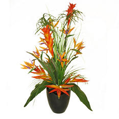 "30"" Deluxe Tropical Cypress Arrangement"