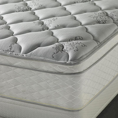 Serta Perfect Sleeper Dunbrook Plush Eurotop Mattress Set - Queen