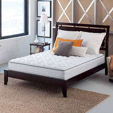 Serta Perfect Sleeper Brindale Queen Firm Mattress