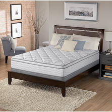 Serta Perfect Sleeper Chasefield Plush Eurotop Queen Mattress Set
