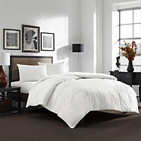 Eddie Bauer 550-Fill Power White Down Comforter (Assorted Sizes)