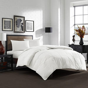 Eddie Bauer 550 Fill Power White Goose Down Comforter - Various Sizes