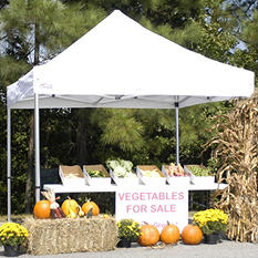 "King Canopy Goliath 10"" × 10"" Pop-up Canopy"