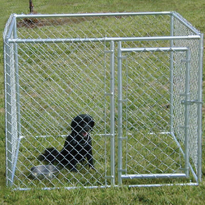 Lucky Dog Chain Link Kennel - 5'L x 5'W x 4'H