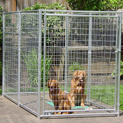 Lucky Dog Welded Mesh Kennel- 6' x 5' x 10'