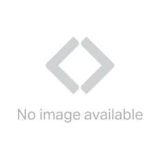 Mythos 6' x 4' Hobby Greenhouse - Silver