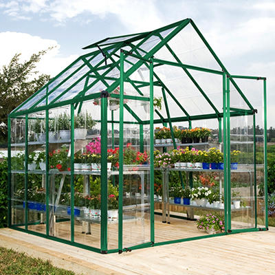 Palram Snap & Grow 8' x 8' Greenhouse - Green