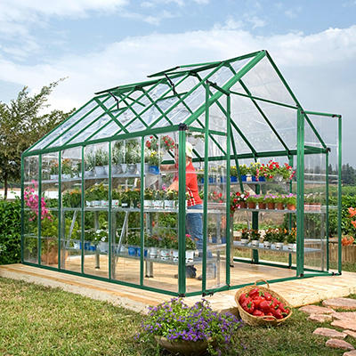 Palram Snap & Grow 8' x 12' Greenhouse - Green