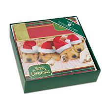 Hallmark Deluxe Elegant Boxed Christmas Cards - Sleeping Pups