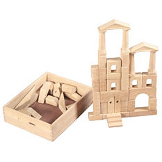 48 Pc Architectural Blocks with Carry Case