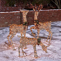 3-Piece Lighted Deer Family