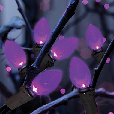 100 Count C4 LED Lights, Purple