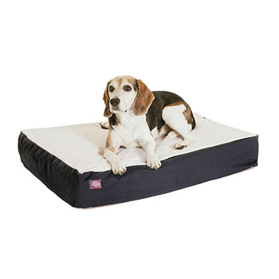 """Majestic Pet Orthopedic Double Pet Bed, 24 x 34"""" (Choose Your Color)"""