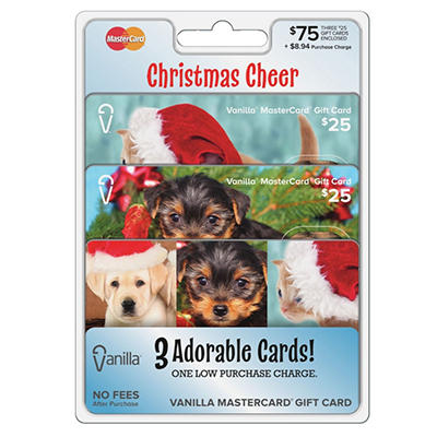 MasterCard Gift Card $75 Multipack - 3/$25 Cards