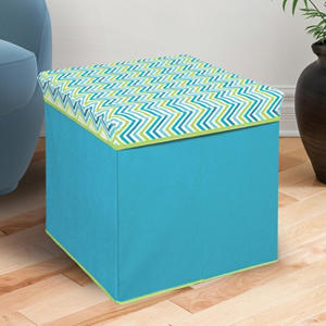 Bintopia Collapsible Storage Ottoman