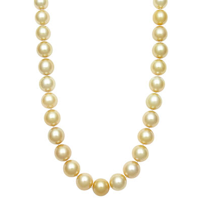 12.0-14.0mm Golden South Sea Pearl Necklace in 14K Yellow Gold