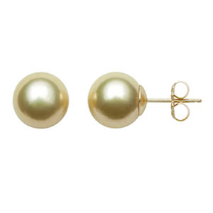 9.0-10.0mm Golden South Sea Pearl Studs in 14K Yellow Gold