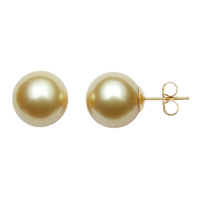11.0-12.0mm Golden South Sea Pearl Studs in 14K Yellow Gold