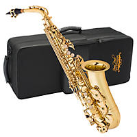 Alto Saxophone with Care Kit