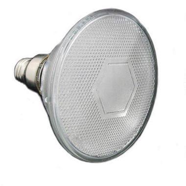 Cyron PAR38 LED Bulb - 4W - Warm White