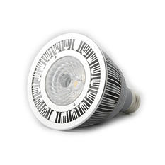 Bulb LED PAR30, Warm White, 100W Equal