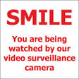 "T3 - Smile/ Surveillance - 6"" x 6"" Decal"