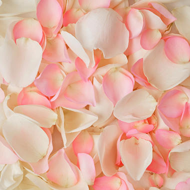 Rose Petals - Pink and White