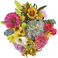 Spring Mixed Bouquet - 8 pk.
