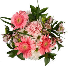 Pretty in Pink Mixed Bouquet - 10 pk.