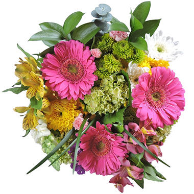 Summer Splash Mixed Bouquet - 5 pk.