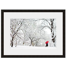 Framed Fine Art Photography - A Winter Walk In The Park By Andy Marcus