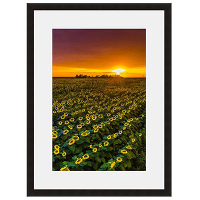 Artistic Frame and Mat - Various Sizes