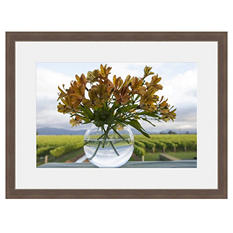 Framed Fine Art Photography - Vineyard Bouquet By Andy Katz