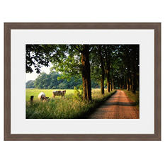 Framed Fine Art Photography - Charming Country Road By Blaine Harrington