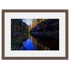 Framed Fine Art Photography - Autumn Oasis By Howard Paley
