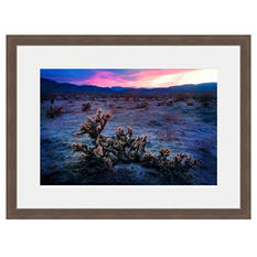 Framed Fine Art Photography - Arizona Desert Sunset By Jordan Stern