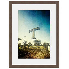 Framed Fine Art Photography - Texas T by Tracy Carlson