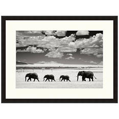 Framed Fine Art Photography - Elephant and Clouds I by Andy Biggs